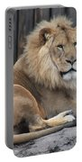 Lion 2 Portable Battery Charger
