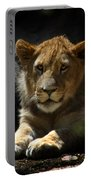 Lion Cub Portable Battery Charger