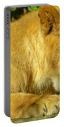 Lion Cub - What A Yummy Snack Portable Battery Charger