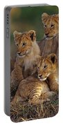 Lion Cubs Portable Battery Charger
