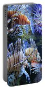 Lion Fish Portable Battery Charger