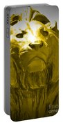 Lion Gold Portable Battery Charger