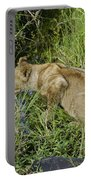 Lion In A Cool Glade Portable Battery Charger