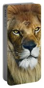 Lion Of Judah II Portable Battery Charger