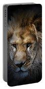 Lion Portraits 0055 Portable Battery Charger