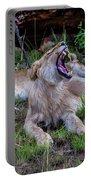 Lion Roar/2 Portable Battery Charger