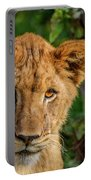 Lioness Cub Portable Battery Charger