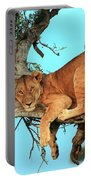Lioness In Africa Portable Battery Charger