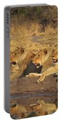 Lionesses Portable Battery Charger