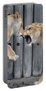 Lioness's Playing 1 Portable Battery Charger