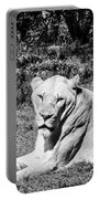 Lionness Portable Battery Charger