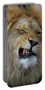 Lions Wink Portable Battery Charger