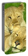 Lions Xvii Portable Battery Charger