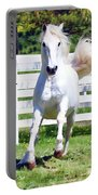 Lipizzan On The Run Portable Battery Charger