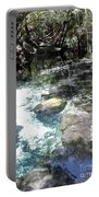 Lithia Springs Portable Battery Charger