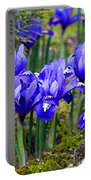 Little Baby Blue Irises Portable Battery Charger