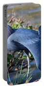 Little Blue Heron Sunbathing Portable Battery Charger