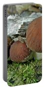 Little Brown Mushrooms In Moss Portable Battery Charger