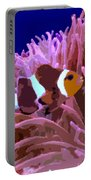 Little Clown Fish Portable Battery Charger