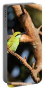 Little Green Bee Eater On A Branch Portable Battery Charger