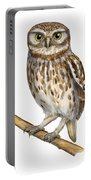 Little Owl Or Minerva's Owl Athene Noctua - Goddess Of Wisdom- Chouette Cheveche- Nationalpark Eifel Portable Battery Charger