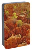 Little Pine Trees Growing On The Valley Cliffs Portable Battery Charger