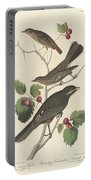 Little Tawny Thrush Portable Battery Charger