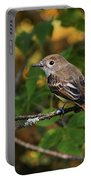 Little Tweet Portable Battery Charger