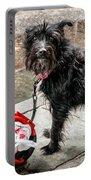 Little Wet Puppy In French Quarter Portable Battery Charger