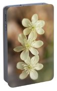 Little White Wildflowers  Portable Battery Charger