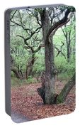 Live Oak Forest Portable Battery Charger