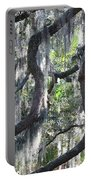 Live Oak With Spanish Moss And Palms Portable Battery Charger