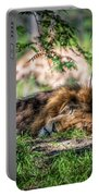 Living In Harmony - Lion Portable Battery Charger