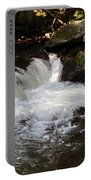 Living Streams Portable Battery Charger