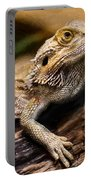 Lizard - Id 16217-202733-1873 Portable Battery Charger