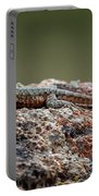 Lizard On A Rock Portable Battery Charger