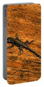 Lizard On Sandstone Portable Battery Charger