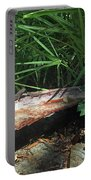 Lizards In The Garden Portable Battery Charger