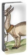 Llama, 1607 Portable Battery Charger