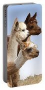 Llama's Three Portable Battery Charger
