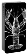 Crawfish In The Dark - Xray Portable Battery Charger