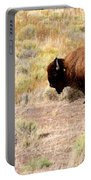 Lone Buffalo  Portable Battery Charger
