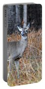 Lone Doe Portable Battery Charger