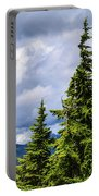 Lone Fir With Clouds Portable Battery Charger