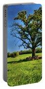 Lone Oak Tree In Wisconsin Field Portable Battery Charger