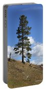 Lone Pine, Yellowstone Portable Battery Charger