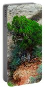 Lone Tree On A Cliff Portable Battery Charger