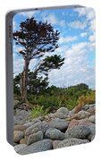 Long Beach Tree Gloucester Ma Portable Battery Charger