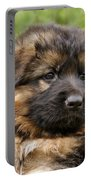 Long Coated Puppy Portable Battery Charger