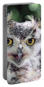 Long Eared Owl In The Trees Portable Battery Charger